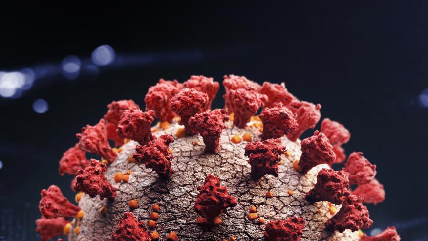 A 3-D rendering of the coronavirus
