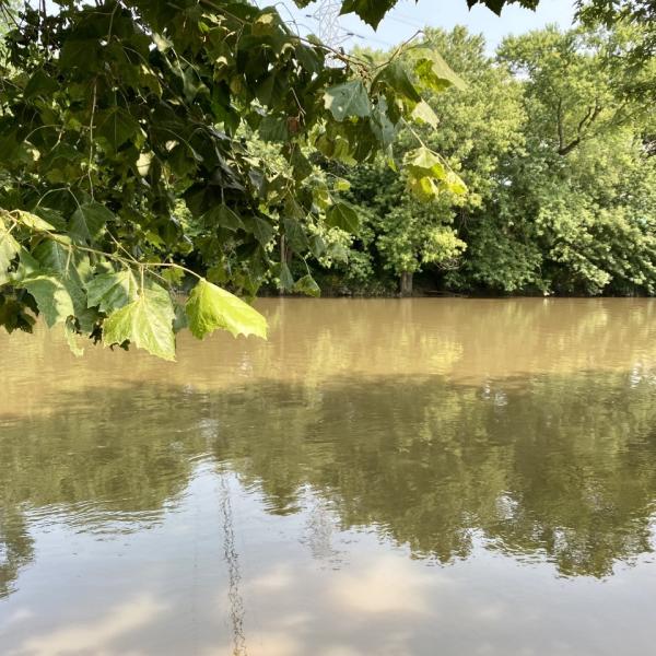 white river noblesville water rescue