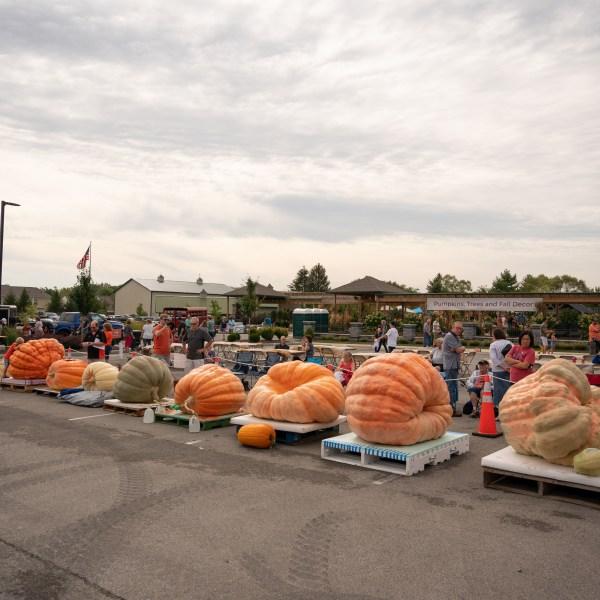 Wasson Great Pumpkin festival